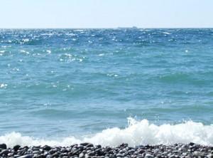 В сочи отпразднуют день черного моря
